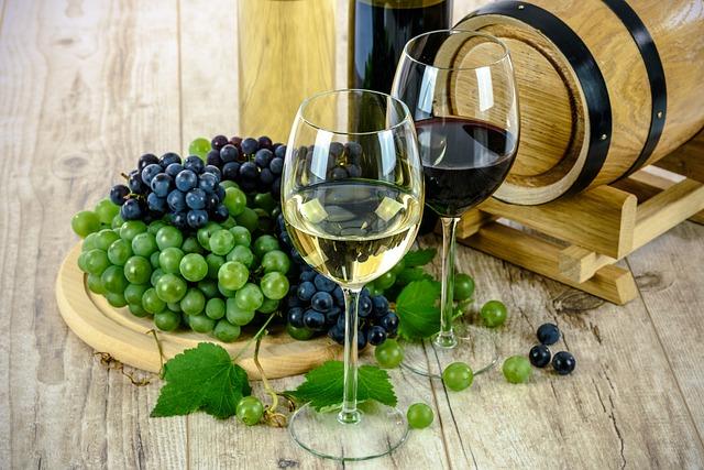 Faire des découvertes œnologiques inoubliables sur la route des vins québécois